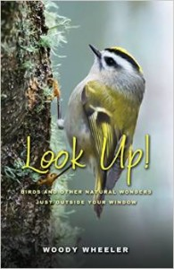 Look Up! Cover