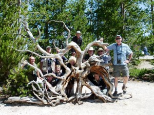Woody with Heatherlea Group in Yellowstone